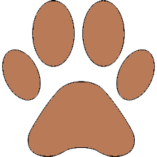 Питомник лабрадоров Scientist Dog